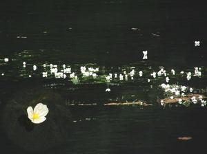 090817b