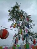 Tanabata5jpg